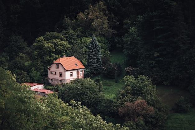Piccola casa solitaria ai margini della foresta