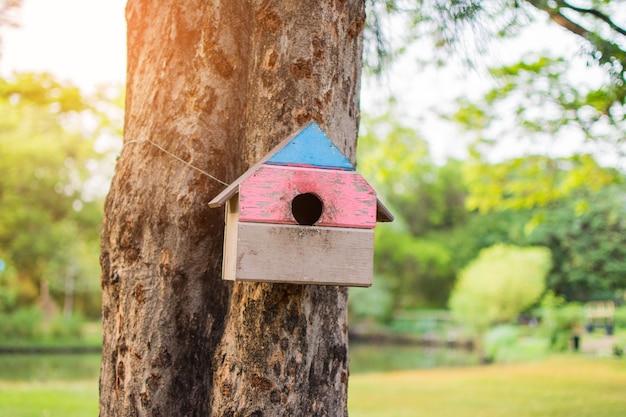 Piccola casa sull'albero dello scoiattolo sull'albero nel parco. il soggetto è sfocato