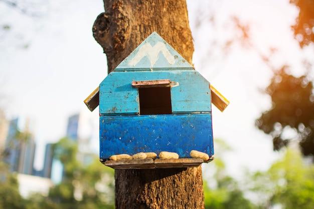 Piccola casa sull'albero dello scoiattolo sull'albero nel parco. il soggetto è sfocato.