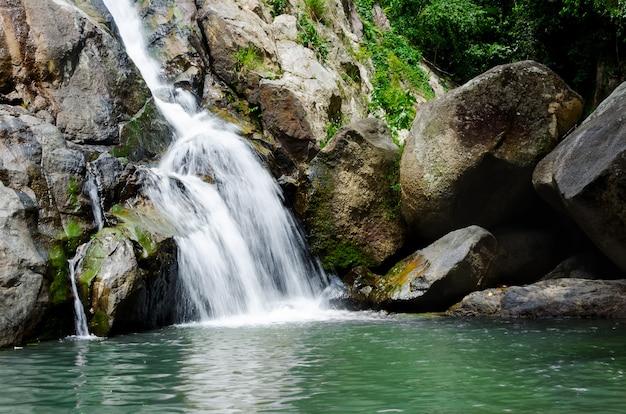 Piccola cascata tropicale della foresta profonda