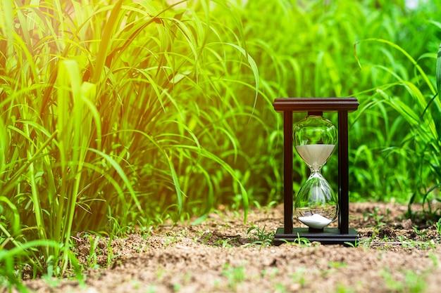 Piccola clessidra nel campo di erba verde. - misurare il tempo che passa e il conto alla rovescia fino alla scadenza.