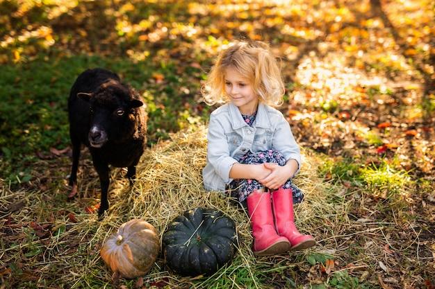 Piccola ragazza bionda riccia in giacca di jeans e stivali rosa che si siedono sulla paglia e che alimentano le pecore domestiche nere. concetto di vita del contadino