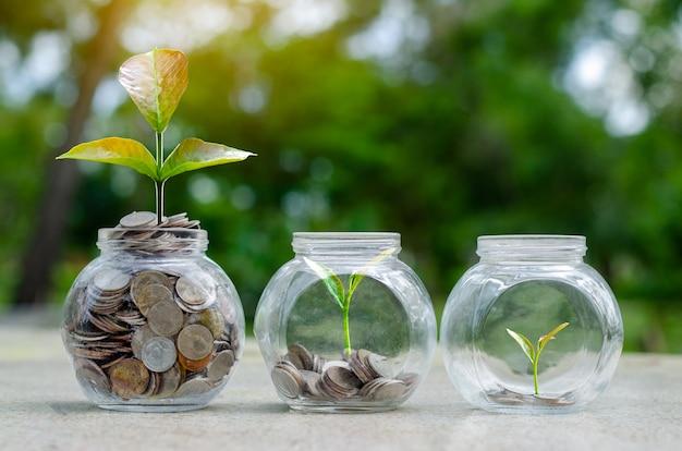 Piccole piante e monete in barattoli