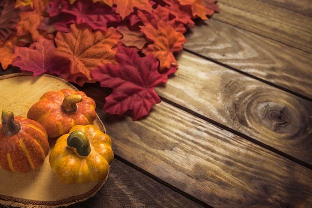 Piccole zucche gialle con foglie di arancio