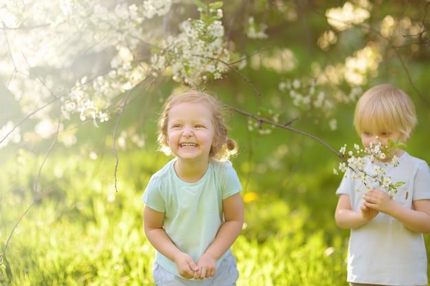 Piccoli bambini svegli che giocano insieme nel giardino di fioritura della ciliegia.
