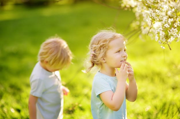 Piccoli bambini svegli che giocano insieme nel parco soleggiato
