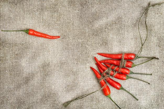 Piccoli peperoncini rossi legati con una corda in gruppo e un peperone