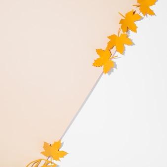 Piccoli volantini sul tavolo luminoso