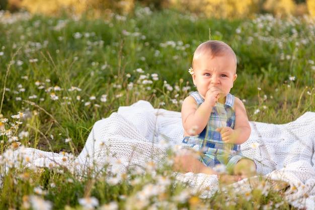 Piccolo bambino divertente sveglio del bambino che si siede nel campo della camomilla