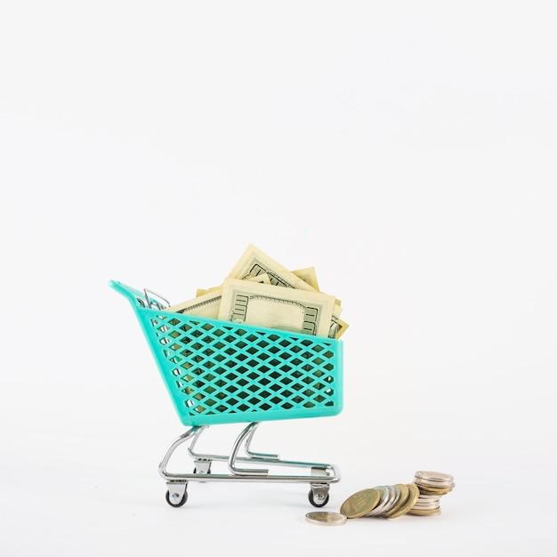 Piccolo carrello della spesa con soldi
