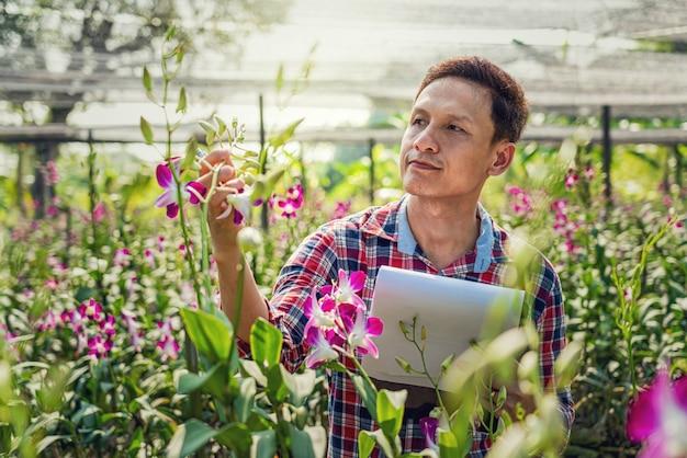 Piccolo imprenditore asiatico dell'azienda agricola di giardinaggio dell'orchidea
