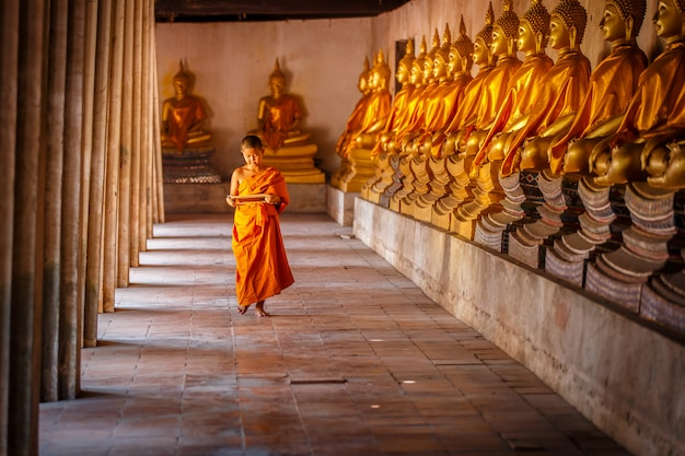 Piccolo novizio che legge e che studia lavagna con divertente in vecchio tempio, provincia di ayutthaya, tailandia