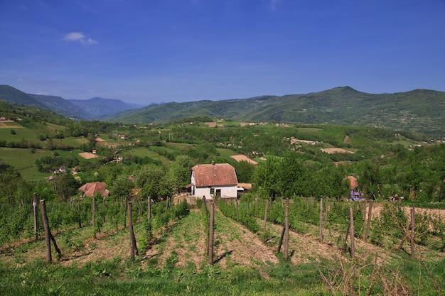 Piccolo villaggio in serbia, montagne dei balcani