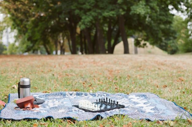 Picnic di vista frontale nel concetto del parco