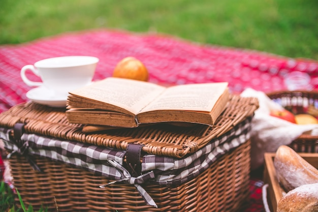 Picnic estivo con libro e cibo sul cesto di vimini nel parco.
