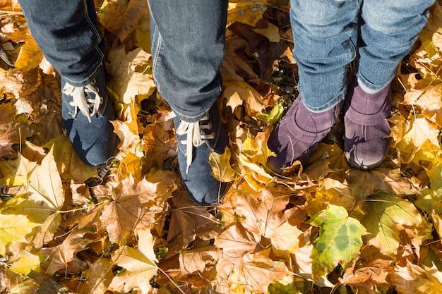 Piedi della madre e del bambino da sopra sulle foglie di autunno