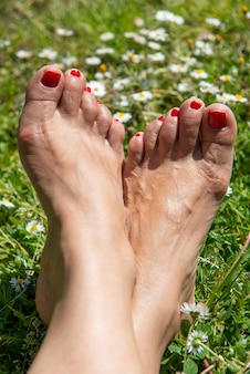 Piedi nudi della donna sui fiori dell'erba e della margherita della molla