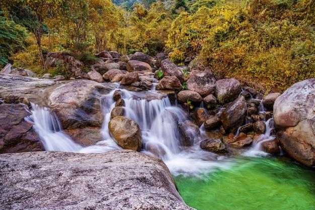 Pietra del fiume e della cascata, vista l'albero di fiume dell'acqua