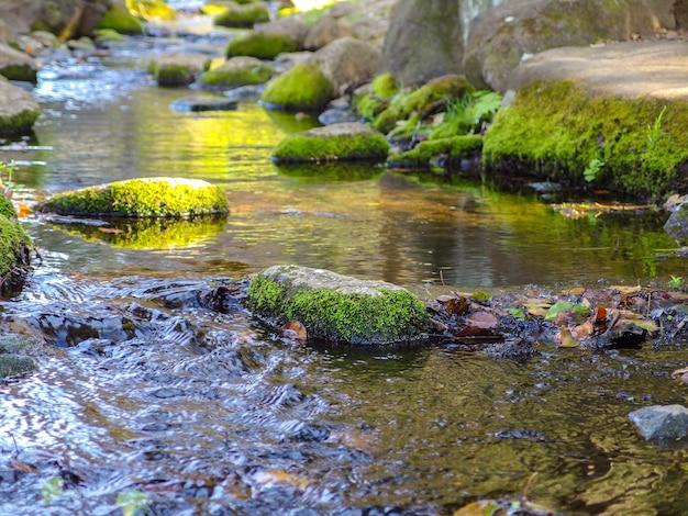 Pietra muscosa naturale della roccia sul fiume scorrente