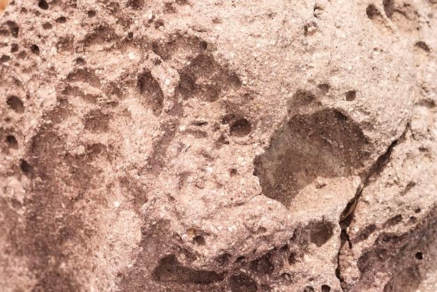 Pietra naturale del fondo di pietra di struttura del fondo.