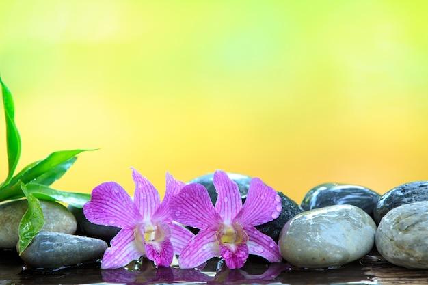 Pietra zen e orchidea rosa sul tavolo di legno con copia spazio per testo o prodotto