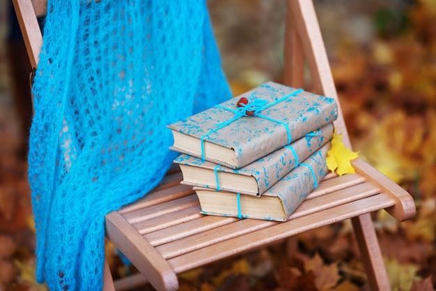 Pila di libri dimenticati su una sedia nel parco