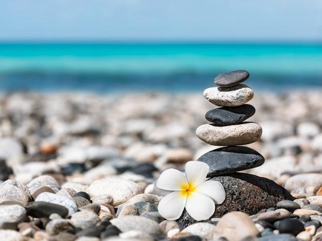 Pila di pietre equilibrate zen con fiore di plumeria