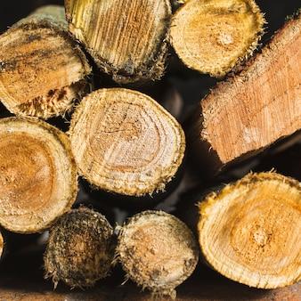 Pila di tronchi secchi