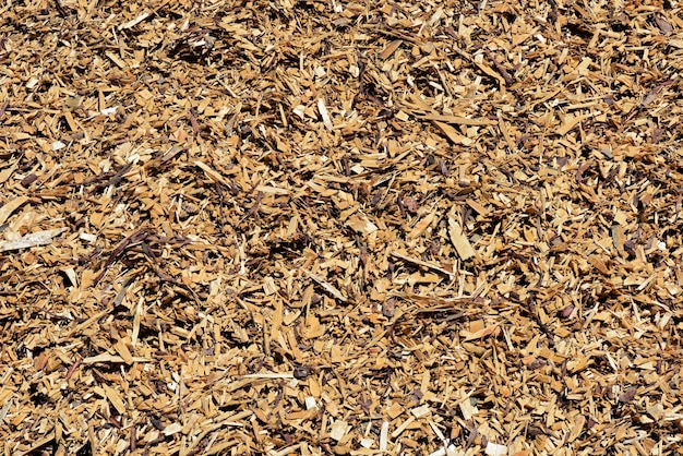 Pila di trucioli di legno