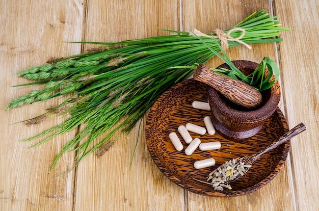 Pillole mediche a base di erbe, etnoscienza. studio