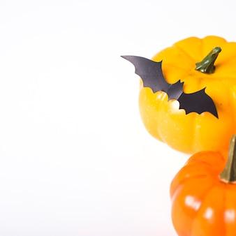 Pipistrello di carta che si trova sulla zucca
