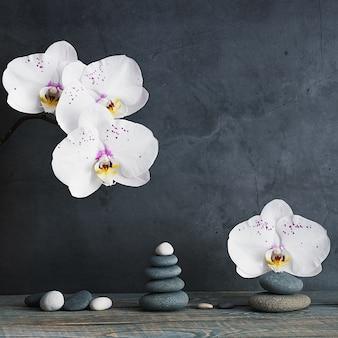 Piramide di pietre e fiori di orchidea su fondo grigio chiaro