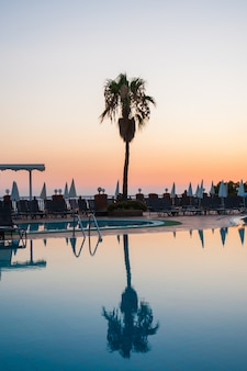 Piscina con palme al tramonto. riflesso d'acqua