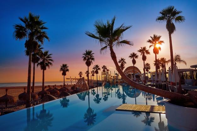 Piscina del resort in una spiaggia con palme sunrise
