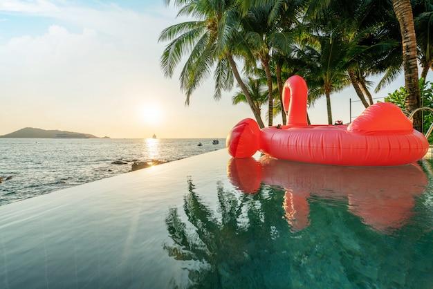 Piscina esterna, cigno galleggiante con tramonto dorato cielo dell'oceano
