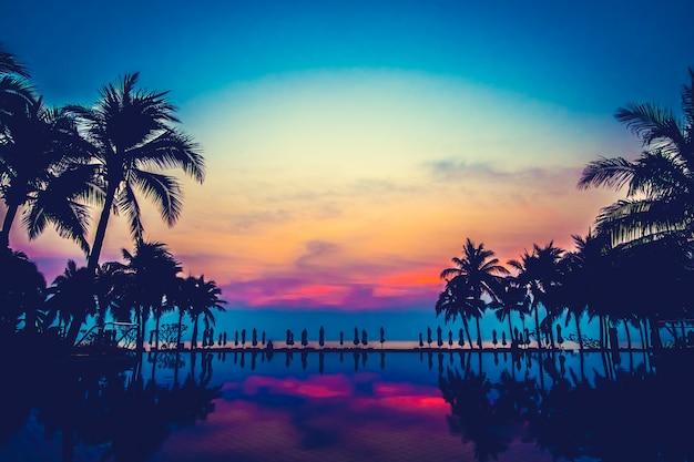 Piscina naturale paesaggio palma oceano