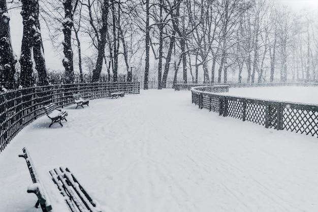 Pittoresco giardino estivo durante l'inverno, coperto di neve. russia, san pietroburgo
