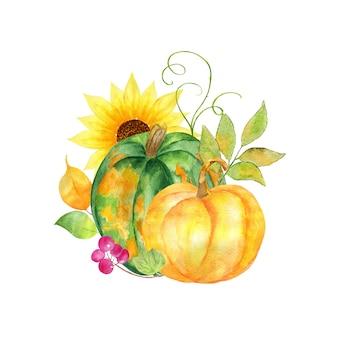 Pittura ad acquerello di zucche