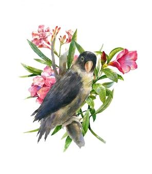 Pittura dell'acquerello con l'uccello e i fiori, su bianco