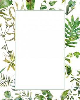 Pittura dell'acquerello dell'illustrazione delle foglie su fondo bianco