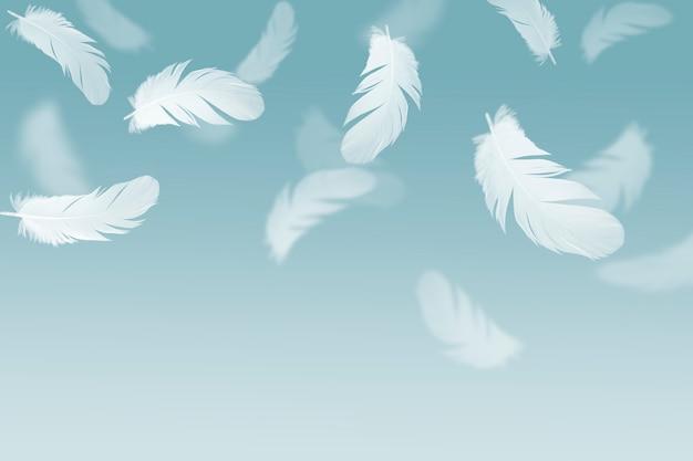 Piuma bianca che fluttua nell'aria.