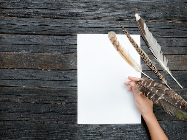 Piuma in mano femminile, foglio di carta pulito.