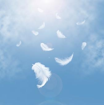Piume bianche astratte che cadono nel cielo.