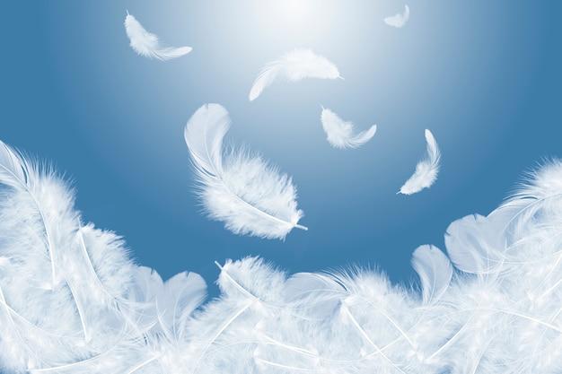 Piume bianche che cadono nell'aria.