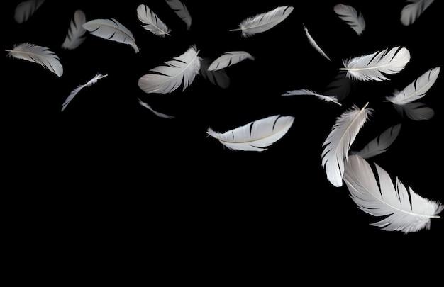 Piume di uccello astratto, bianco galleggianti nel buio.