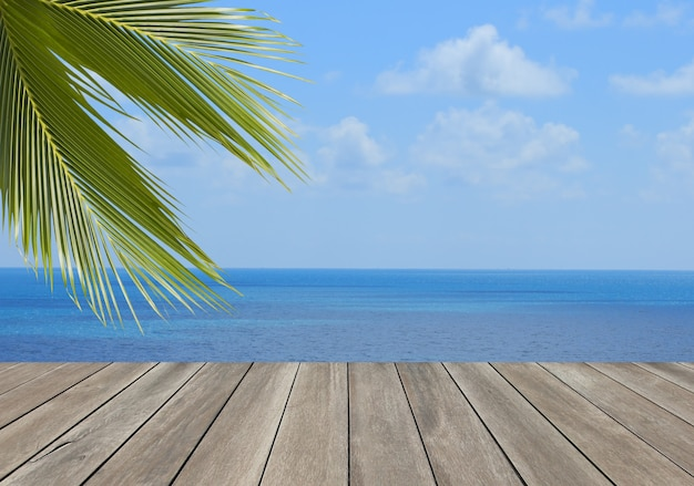 Plancia di legno sopra la spiaggia con la foglia dell'albero del cocco