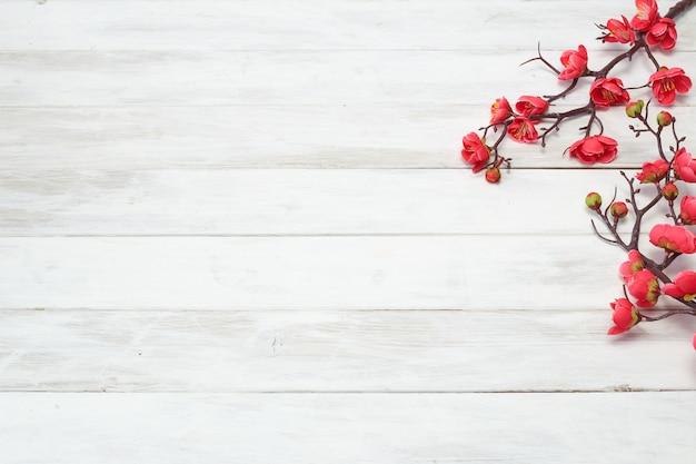 Plum flowers blossom sulla plancia di legno bianca