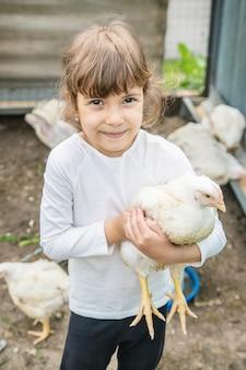 Polli bio in una fattoria di casa un bambino.