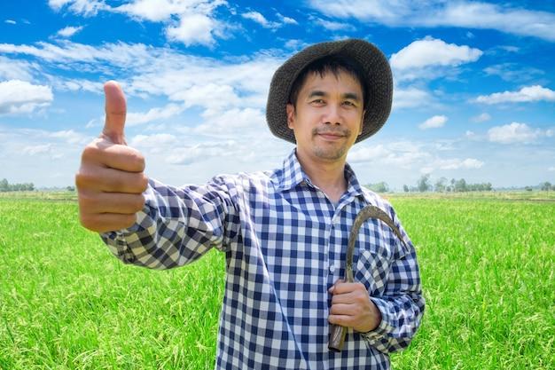 Pollice felice della mano del giovane agricoltore asiatico su e tenendo falce in un giacimento e un cielo blu verdi del riso