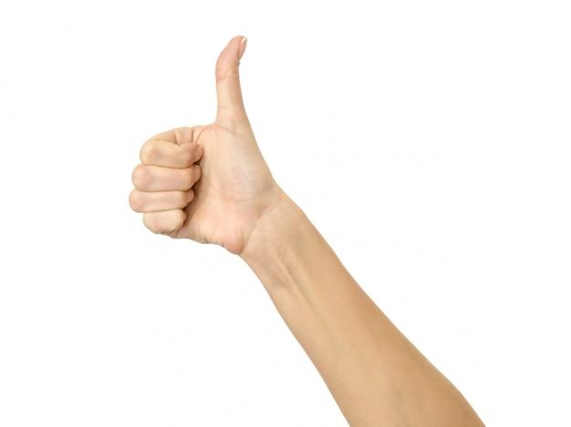 Pollice in su. gesturing della mano della donna isolato su bianco